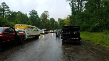 flood horses43