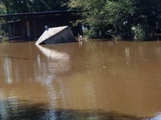 Flood Wed Waters2