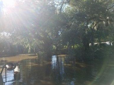 Flood Wed5