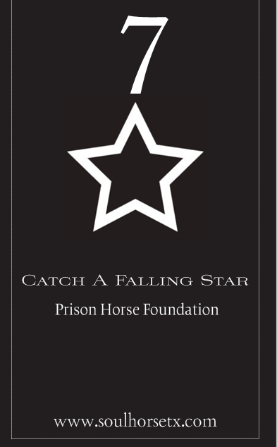 star 7 outline prison